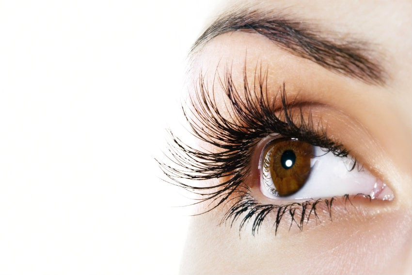 eyelash technician course - babtac related image